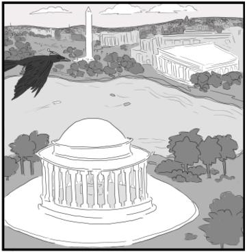 crow dc
